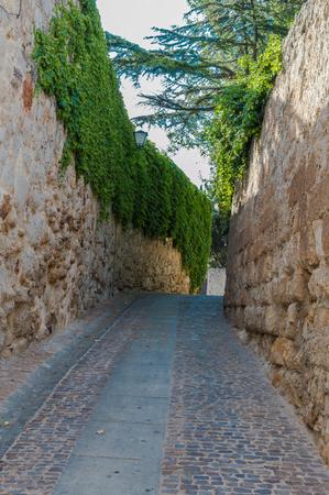 empedrado: calle pavimentada de una ciudad antigua, Zamora, Espa�a