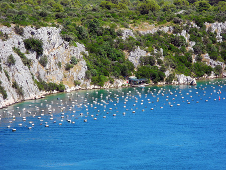 Oyster farm near the bridge of Krk in Croatia.