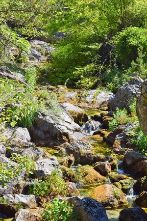 Mountain stream of Prionia, Olympus, Greece.