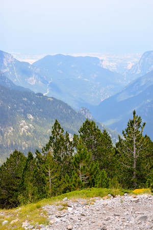 Olympus mountain range at summer in Greece. Фото со стока