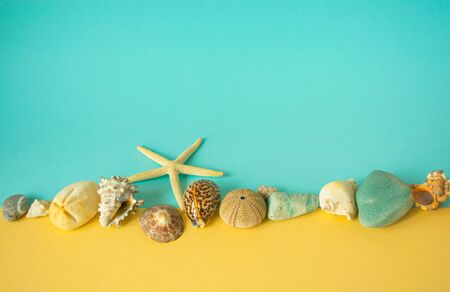 Marine composition of shells, stones and starfish on paper of blue and yellow background. Summer rest and sea subject photo for design with copy space in minimal style, template for lettering or text.