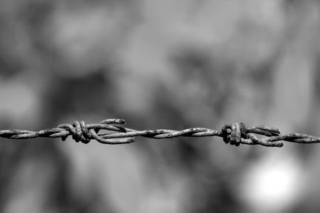 part prison: Image of barbwire sections with sharp thorns