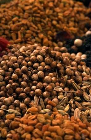 Indian spice photo