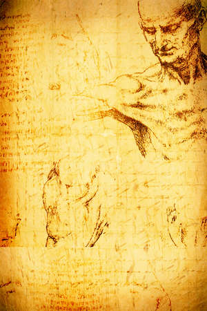 Photo of the Vitruvian Man by Leonardo Da Vinci  photo