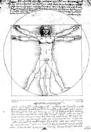 Vitruvian Man by Leonardo Da Vinci from 1492 on textured background.