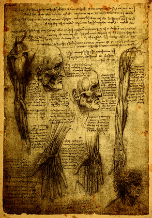 Close up of Old anatomy drawings by Leonardo Da Vinci