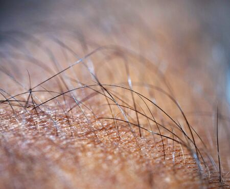 Close up of human skin