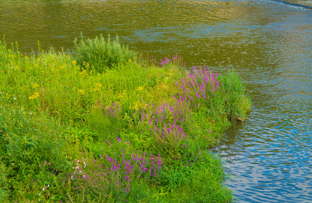 Near Valley nature reserve from Boos to Niederhausen Bad Kreuznach, Rhineland-Palatinate, Germany Stockfoto