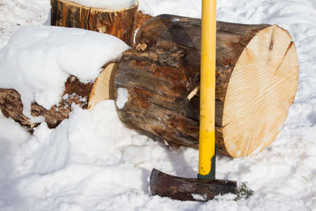 Pine log ready to be split with an axe for winter firewood Stock Photo