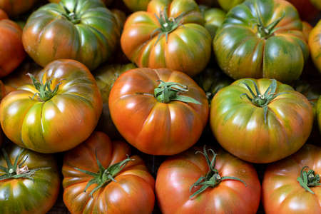 Delicious tomatoes in Summer tray market agriculture farm full of organic. Fresh tomatoes, It can be used as background.