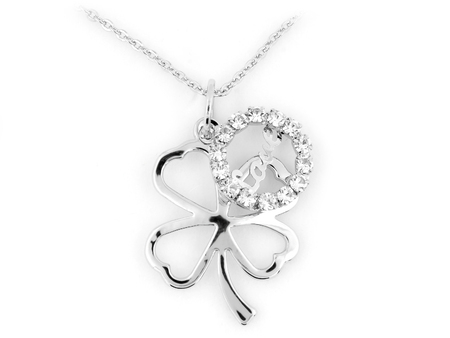 four objects: Silver Clover Necklace - One color background Stock Photo