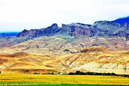 HIGH MOUNTAIN GRASSLAND Imagens