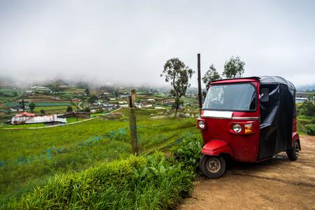Auto rickshaw tuk-tuk op plantaardige plantage. Mistige dag. Stockfoto