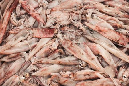 Verse inktvis in de markt Stockfoto