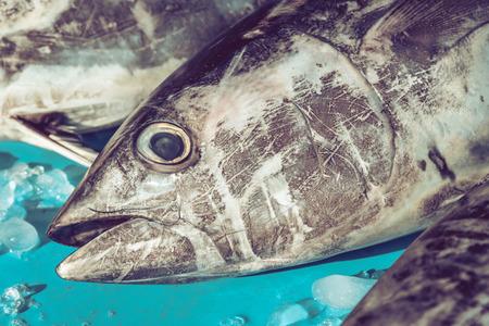 Close-up van tonijnhoofden in de vismarkt Stockfoto
