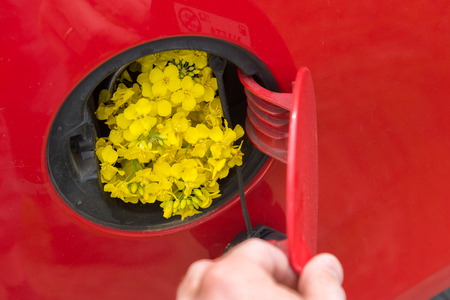 Open fuel tank lid in red car with rapeseed.