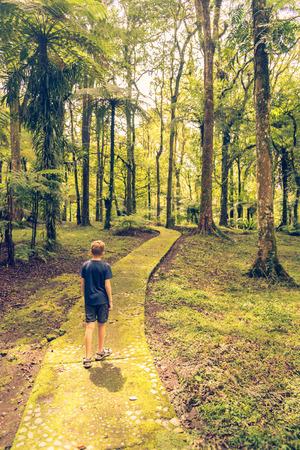 A children walk a way in forest.