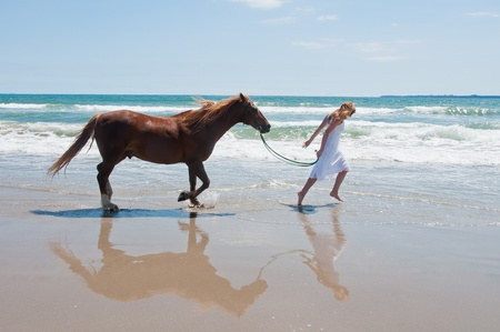 Girl exercising horse at the beach Stock Photo