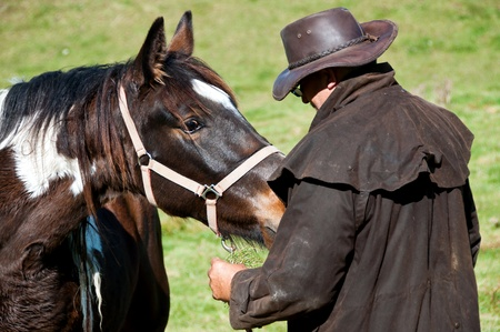 Working with horse ready to train and break in Stock Photo - 13553498
