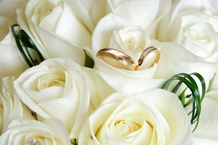Gold wedding rings and white roses Stock Photo
