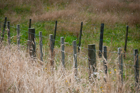Old rickity farm fence in dry grasses Stock Photo