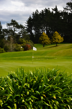 New Zealand Golf Course with flag in hole Stock Photo
