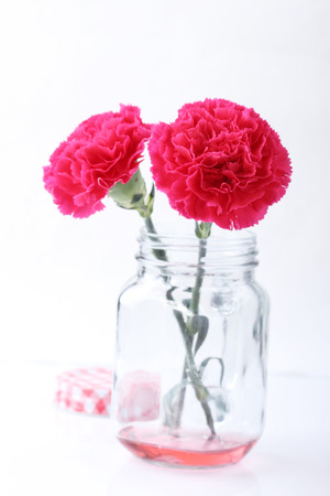 red  carnation: red carnation flower in glass mason jar on white background Stock Photo