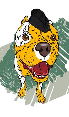 Dog soldier. Hand drawn vector fun portrait. Stock fotó