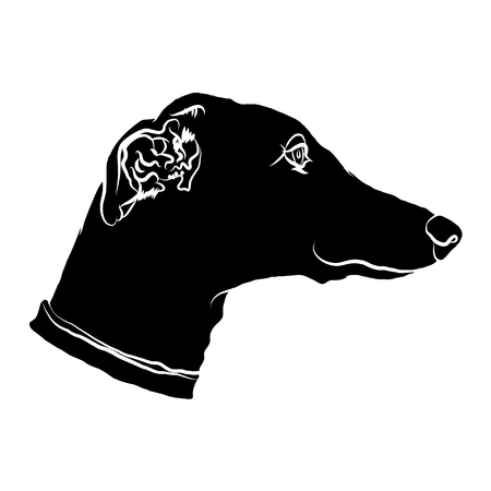 Silhouette of a muzzle of a greyhound. Dog's  icon. Vector illustration. Illustration