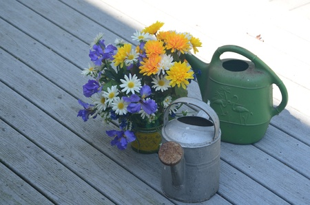 Flowers and watering pails Stock Photo