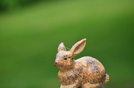 nack: Rabbit