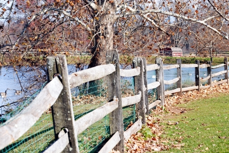split rail: Split rail fence