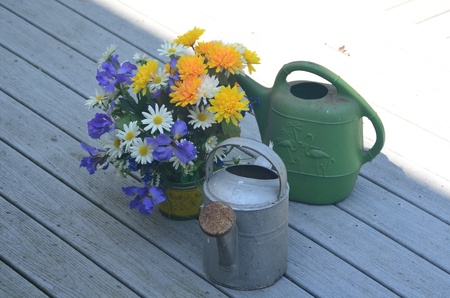bucket water: Las flores de la cubierta y la cubeta de agua