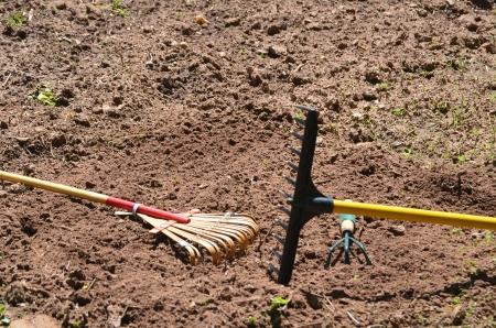 Two rakes in the garden