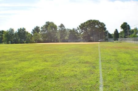 backstop: Baseball diamond