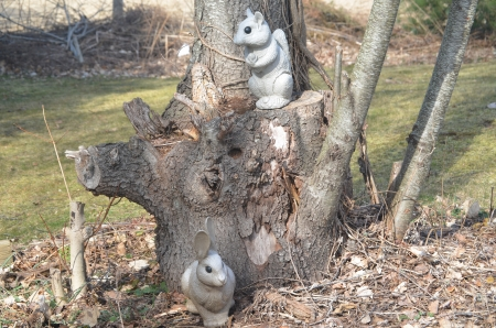 Rabbit and squirrel in a tree