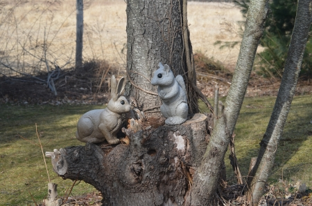 A squirrel and rabbit on a stump Фото со стока - 15556396
