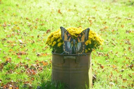 butterfly garden: Butterfly garden decoration