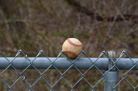 Baseball stuck in a fence