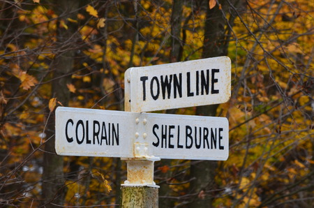 street signs: Street signs