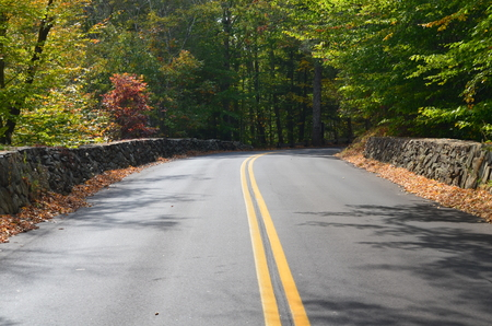 Country road with stone walls