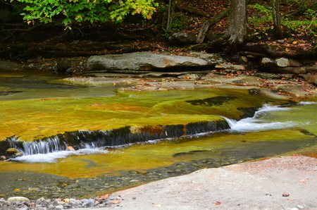 Mountain stream flowing over smooth stones