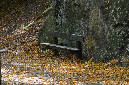 A park bench near a stone wall Stock Photo