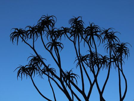 Lush background showing succulent plants with long stems and fronds silhouetted against deep blue sky