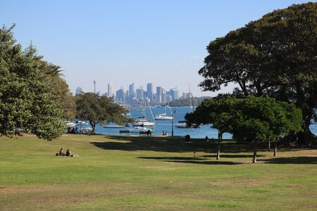 View across park through trees to Sydney city skyline in the distance Editorial