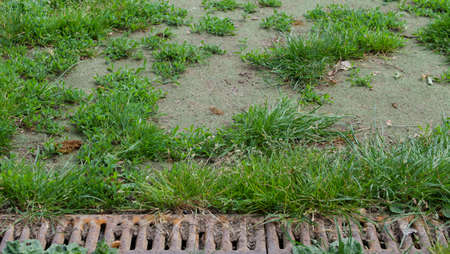 Background of old rusty metal drain grid beside patchy grass Stock fotó