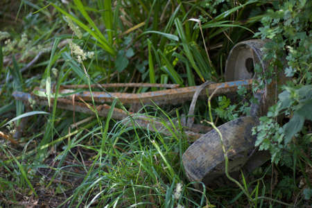 Rusted old gold trolley with wheels lying in grassy undergrowth