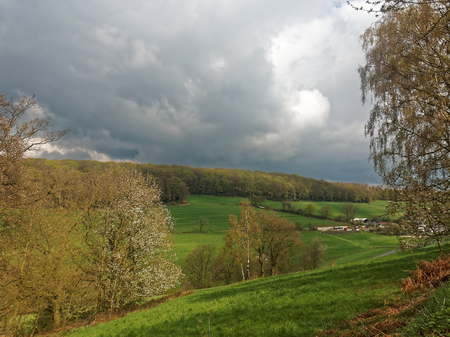 knoll: A forest on the hill and a farm with fields in the valley in the German town Velbert.