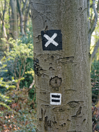 recuperation: Signs on a tree show wanderers the way.