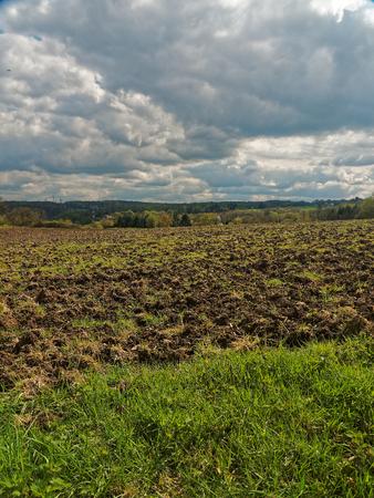 siembra: Un campo recién arado unos pocos días antes de la siembra.
